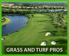 Grass and Turf Pros