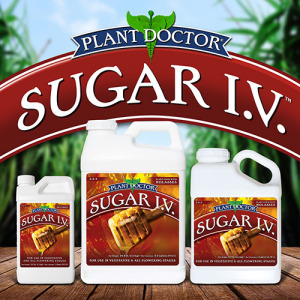 SUGAR I.V.™ 3-2-3 Plant Food
