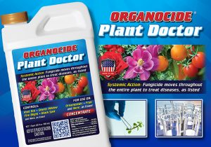 Plant Doctor Systemic Fungicide
