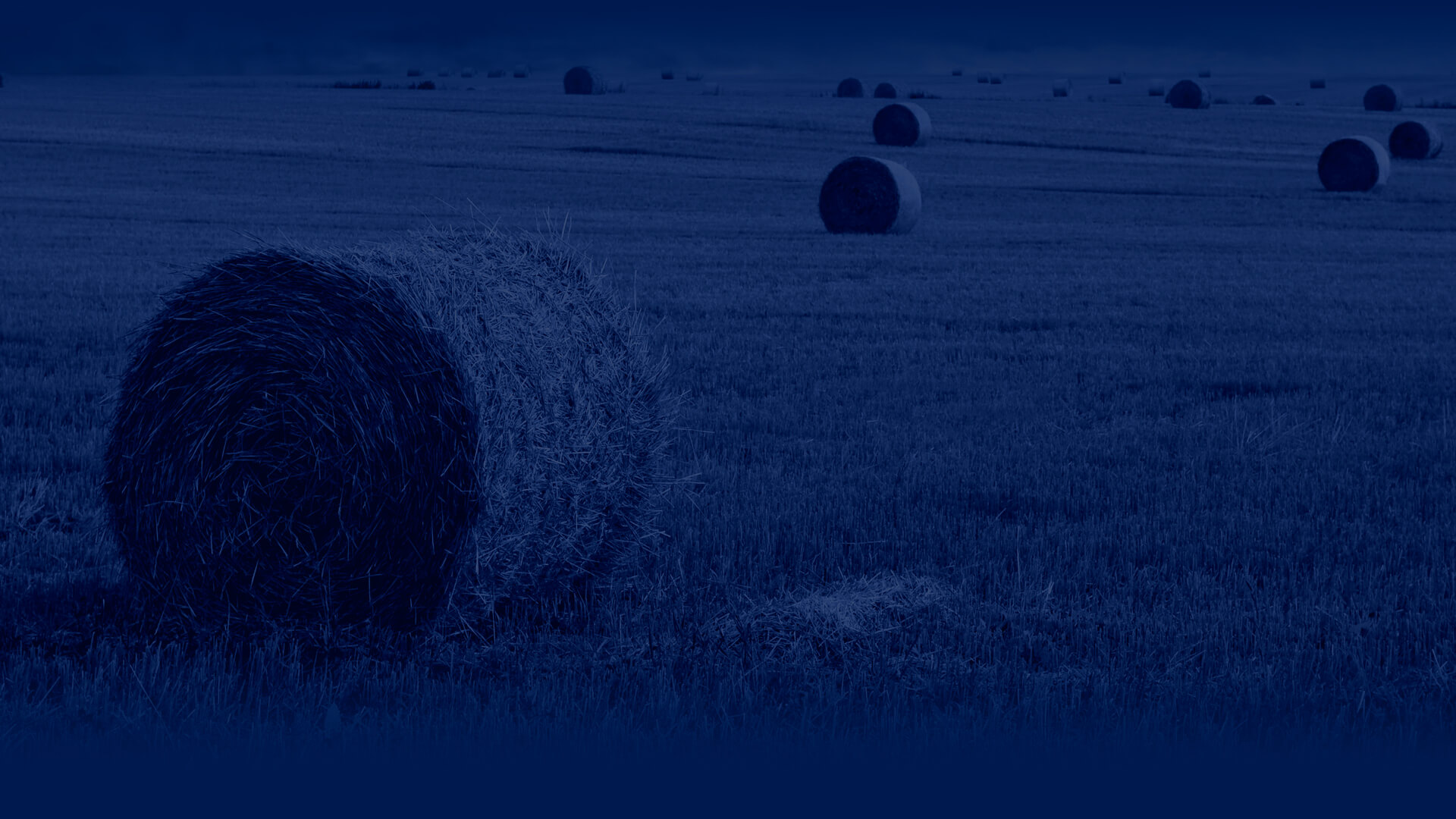 blue backround of a field with rolls of hay