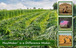 partially cut meadow with three square images of a tractor stacking hay an american flag on a rolled bale of hay and a field of bales